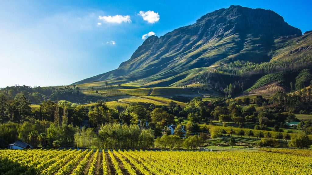 cape-winelands-south-africa-1600x900